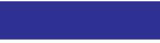 Международная курьерская служба | ICS Логотип